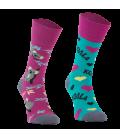 Comodo funny socks Koala